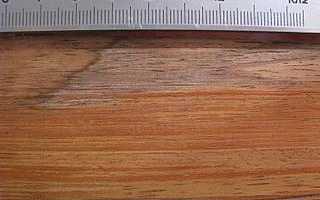 Как определить породу дерева по доске