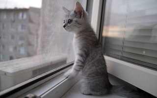 Как настроить окно ПВХ